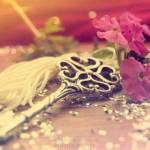 2. Evlilik İçin, İlk Eşin İzni Gibi Bir Şart Var mı?