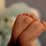 Tüp Bebek İçin Kullanılacak Olan Yumurtaların İmhası