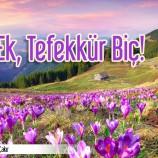 İLİM EK, TEFEKKÜR BİÇ!